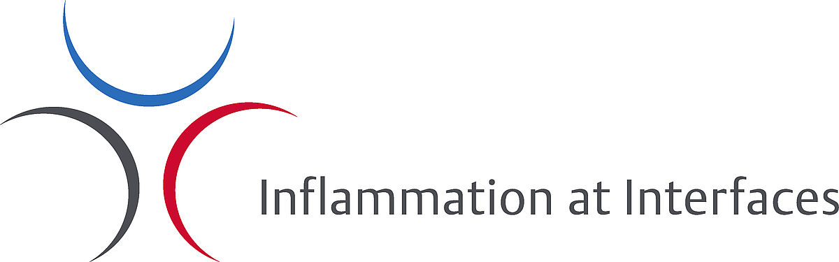 cluster of excellence inflammation at interfaces